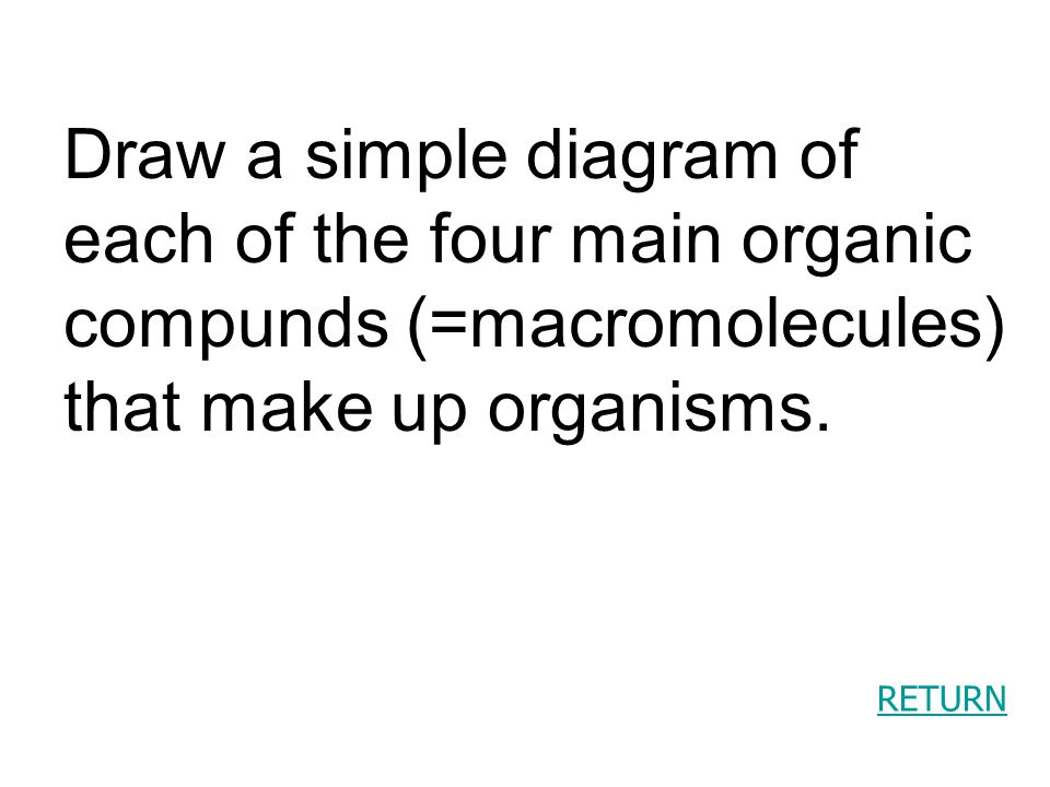 RETURN Draw a simple diagram of each of the four main organic compunds (=macromolecules) that make up organisms.