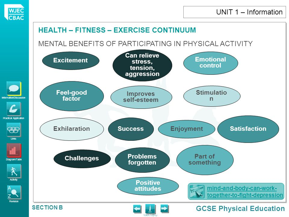 Information/Discussion Practical Application Links Diagram/Table Activity Revision GCSE Physical Education HEALTH – FITNESS – EXERCISE CONTINUUM MAIN MENU SECTION B ACHIEVING A HEALTHY LIFESTYLE Adherence StrategyStaying Motivated Setting Goals Making Correct Choices UNIT 1 – Information NHS should use term fat instead of obese, says minister