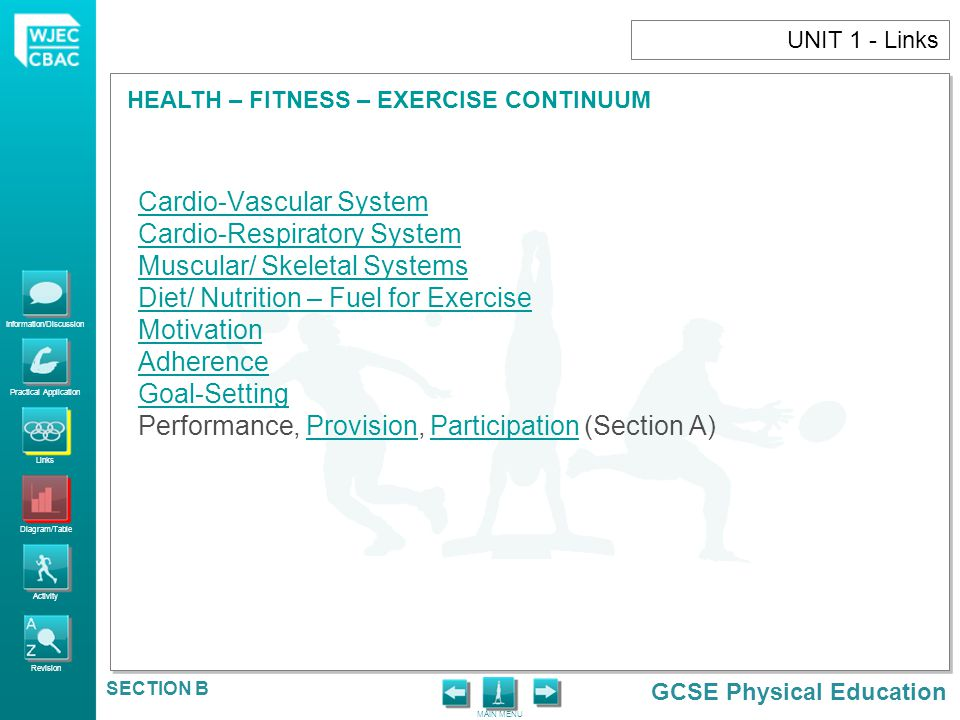 Information/Discussion Practical Application Links Diagram/Table Activity Revision GCSE Physical Education HEALTH – FITNESS – EXERCISE CONTINUUM MAIN MENU SECTION B UNIT 1 - Activity 1)Define the terms 'health' and 'fitness'.