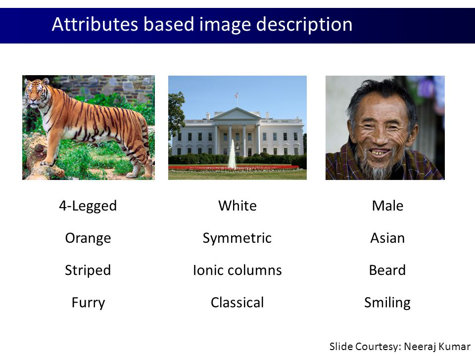 Attribute Classifiers Attribute and Simile Classifiers for Face Verification N.