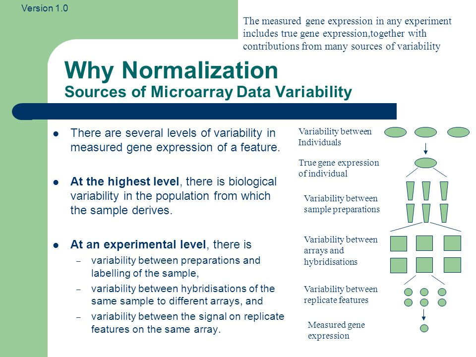Version 1.0 Normalisation Examples Probe Intensity Value The raw intensities of signal from each spot on the array are not directly comparable.