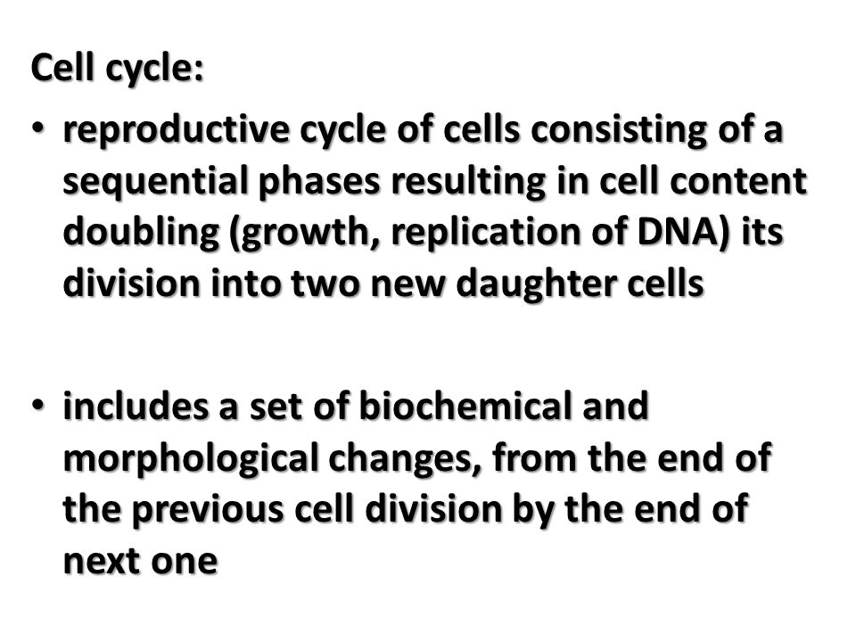 Cell cycle phases M-phase (the period of cell division) M-phase (the period of cell division) Interphase (the period between cell divisions): Interphase (the period between cell divisions):  G1 - phase of rapid growth and reconstruction of cell organelles (intense anabolic processes, synthesis of cyclin A, C, D, E, proteins, RNA  S - phase DNA replication (doubling the amount of DNA, weight and volume of cell)  G2 - phase preparatory to enter the cells in mitosis (mitotic spindle protein synthesis, synthesis of cyclin B, the production of the components necessary to play the plasma membrane in telophase of mitosis and cytokinesis).