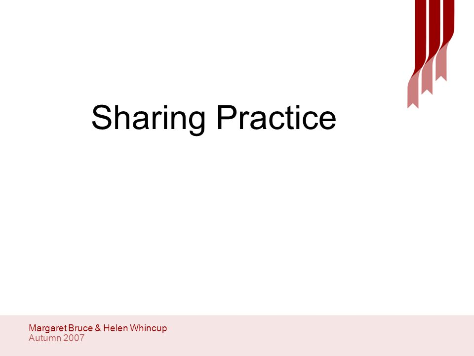 Autumn 2007 Margaret Bruce & Helen Whincup Professionally Competent and Confident Level 9 (PLO and HEI) Students should be demonstrating that they can constructively challenge peers and other professionals.