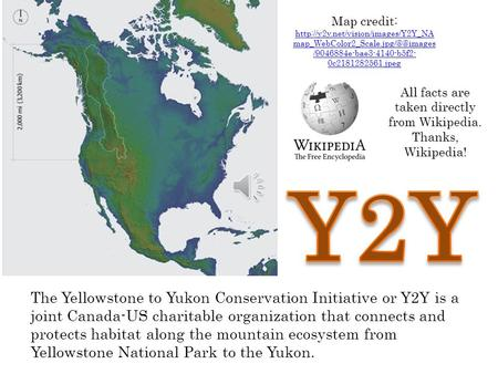 The Yellowstone to Yukon Conservation Initiative or Y2Y is a joint Canada-US charitable organization that connects and protects habitat along the mountain.