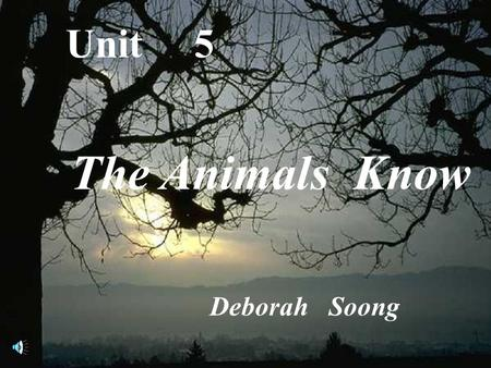Unit 5 The Animals Know Deborah Soong The Animals Know Teaching Activities Index.