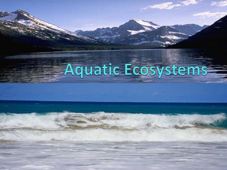 Freshwater Ecosystems Objectives Describe the factors that determine where an organism lives in an aquatic ecosystem. Describe the littoral zone and.