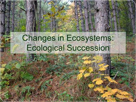 Changes in Ecosystems: Ecological Succession. Definition: Natural, gradual changes in the types of plant species that live in an area. Plant communities.