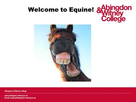 Welcome to Equine!. Employer engagement Methodology Questionnaire split into 4 main sections: –Course content suitability –Work Experience –Employee Professional.