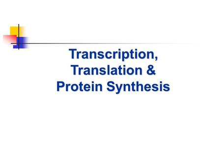 Transcription, Translation & Protein Synthesis. Protein Synthesis Protein synthesis is the process in which a cell makes protein based on the message.