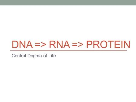 "DNA => RNA => PROTEIN Central Dogma of Life. DNA Name: Deoxyribonucleic Acid ""Molecule of Life"" Stays in the nucleus of eukaryotes Codes for RNA and ultimately."