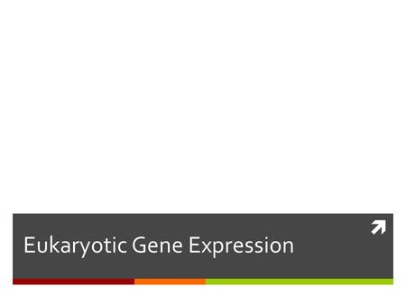  Eukaryotic Gene Expression.  Transduction  Transformation.