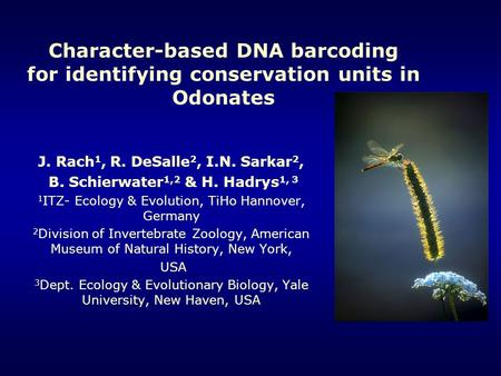 Character-based DNA barcoding for identifying conservation units in Odonates J. Rach 1, R. DeSalle 2, I.N. Sarkar 2, B. Schierwater 1,2 & H. Hadrys 1,