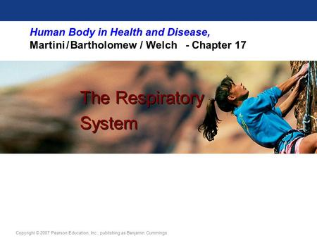 Human Body in Health <strong>and</strong> Disease, Martini / Bartholomew / Welch - Chapter 17 The Respiratory System The Respiratory System Copyright © 2007 Pearson Education,