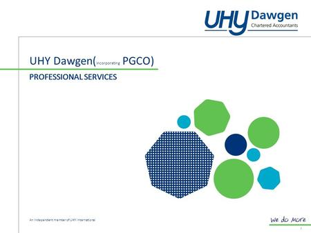 PROFESSIONAL SERVICES UHY Dawgen( Incorporating PGCO) 1 PROFESSIONAL SERVICES An independent member of UHY international.