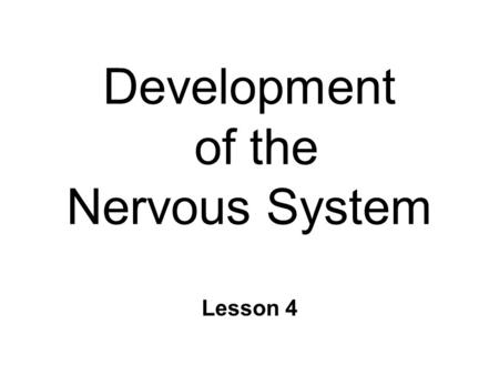 Development of the Nervous System Lesson 4. Development of the Brain n Adult brain structure product of… l Genetic instructions l Cell-to-cell signals.