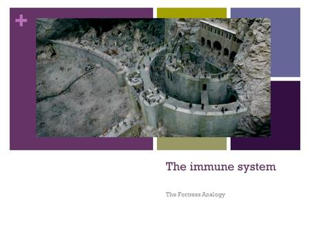 The immune system The Fortress Analogy.