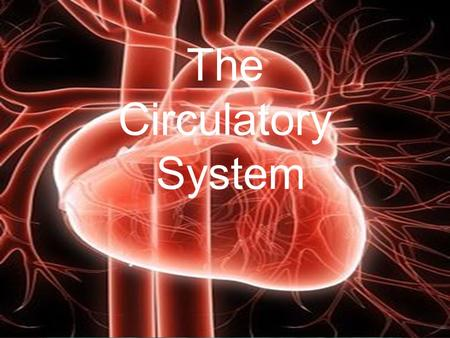 The Circulatory System. Functions of the Circulatory system 1.Transportation of water, Oxygen, CO2 2.Distribution of nutrients 3.Maintenance of body temp.