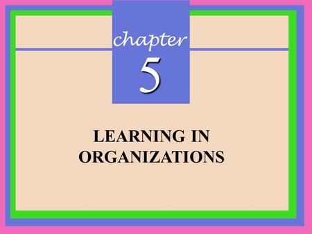 Chapter 5 LEARNING IN ORGANIZATIONS. CHAPTER 5 Learning in Organizations Copyright © 2002 Prentice-Hall Learning in Organizations Definition: A relatively.