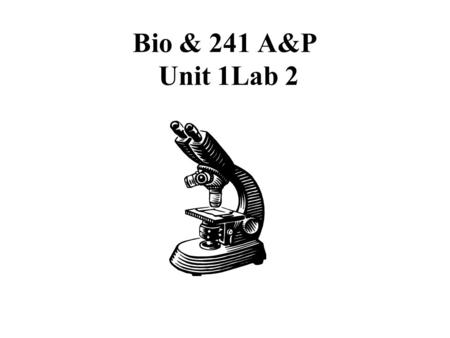 Bio & 241 A&P Unit 1Lab 2. Histology Slides for the Epithelial, Connective, and Integumentary Tissues Slides are presented in order of magnification As.