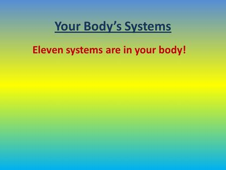 Your Body's Systems Eleven systems are in your body!