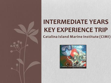Catalina Island Marine Institute (CIMI) INTERMEDIATE YEARS KEY EXPERIENCE TRIP.