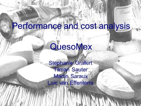 Performance and cost analysis QuesoMex Stephanie Grallert Tilman Sauter Martin Saraux Loïc van Effenterre Performance and cost analysis QuesoMex.