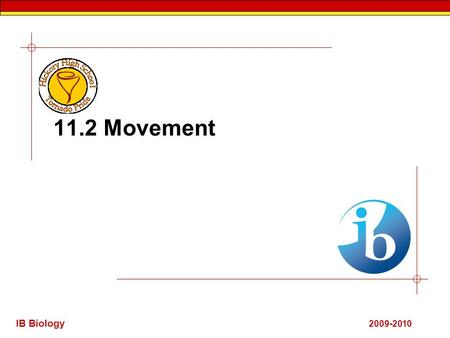 IB Biology 2009-2010 11.2 Movement. IB Biology 11.2.1 Human movement.  Human movement is produced by the skeletal acting as simple lever machines. The.