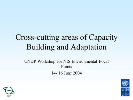 Cross-cutting areas of Capacity Building and Adaptation UNDP Workshop for NIS Environmental Focal Points 14- 16 June 2004.