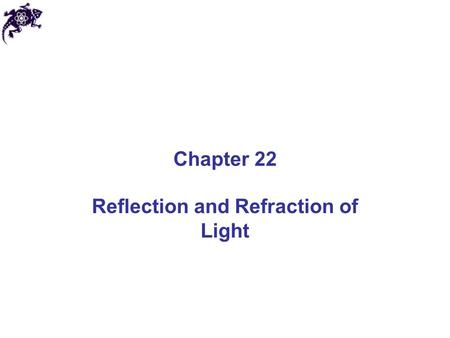 Chapter 22 Reflection and Refraction of Light. Geometric Optics and Ray Approximation Light travels in a straight-line path in a homogeneous medium until.