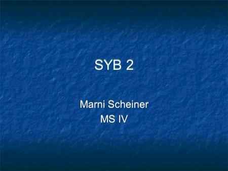 SYB 2 Marni Scheiner MS IV Marni Scheiner MS IV. What kind of image is this, and what do you see?
