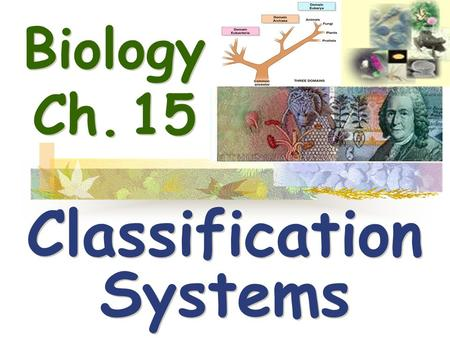 Biology Ch. 15 Classification Systems Classification Systems.