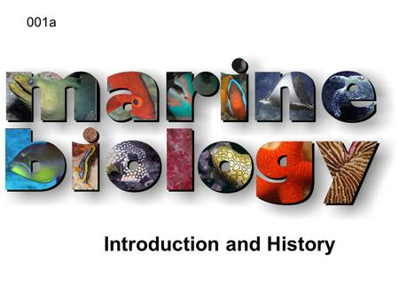 Introduction and History 001a. What is Marine Biology? Marine biology - the study of organisms that live in the sea.Marine biology - the study of organisms.