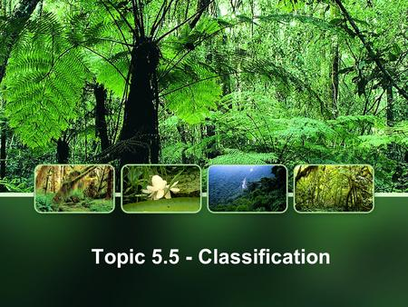 Topic 5.5 - Classification. What is Taxonomy? Systematics is the study of the diversity of life and its evolutionary history Systematics is combinaton.
