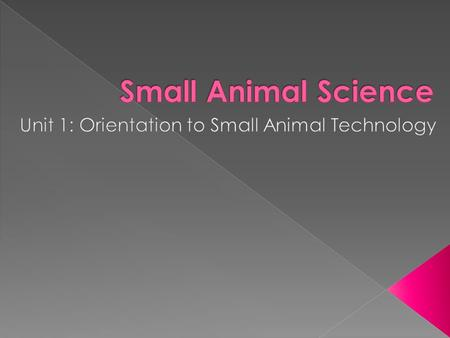  The small animals discussed in this course are domesticated animals or pets, owned by the human population.  Domestic = living near or about human.