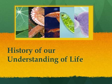 History of our Understanding of Life. How is Life Classified? A short history… 1700s 300s BC 1977 Aristotle Carl Linnaeus Carl Woese.