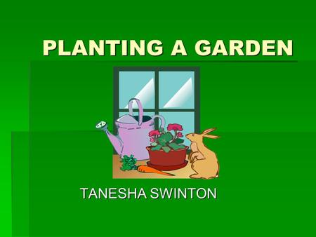 PLANTING A GARDEN TANESHA SWINTON. PREPARING THE SOIL FOR PLANTING  First dig the soil over, and then put the pig, sheep and chicken manure and compost.