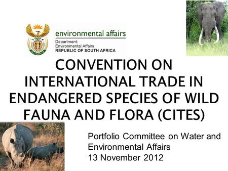 CONVENTION ON INTERNATIONAL TRADE IN ENDANGERED SPECIES OF WILD FAUNA AND FLORA (CITES) Portfolio Committee on Water and Environmental Affairs 13 November.