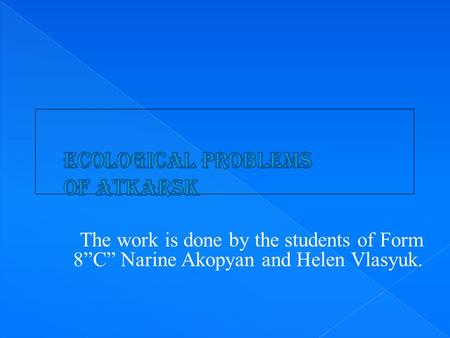 "The work is done by the students of Form 8""C"" Narine Akopyan and Helen Vlasyuk."