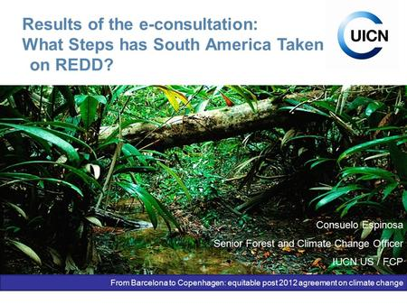 Unión Internacional para la Conservación de la Naturaleza Results of the e-consultation: What Steps has South America Taken on REDD? Consuelo Espinosa.