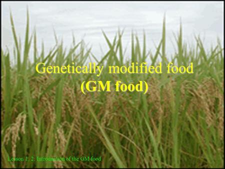 Genetically modified food (GM food) Lesson 1, 2: Introduction of the GM food.