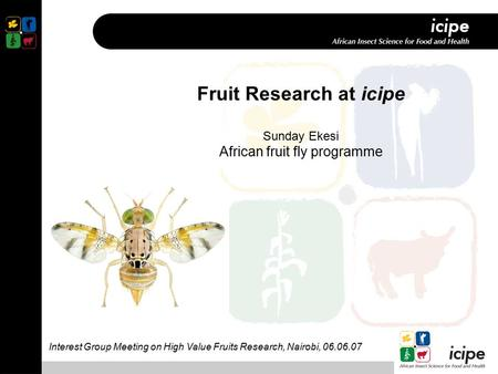 Fruit Research at icipe Sunday Ekesi African fruit fly programme Interest Group Meeting on High Value Fruits Research, Nairobi, 06.06.07.