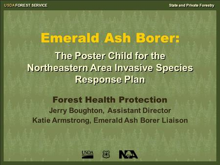 USDA FOREST SERVICEState and Private Forestry Emerald Ash Borer: Forest Health Protection Jerry Boughton, Assistant Director Katie Armstrong, Emerald Ash.