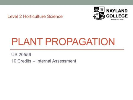 PLANT PROPAGATION US 20556 10 Credits – Internal Assessment Level 2 Horticulture Science.