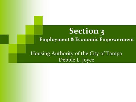 Section 3 Employment & Economic Empowerment Housing Authority of the City of Tampa Debbie L. Joyce.