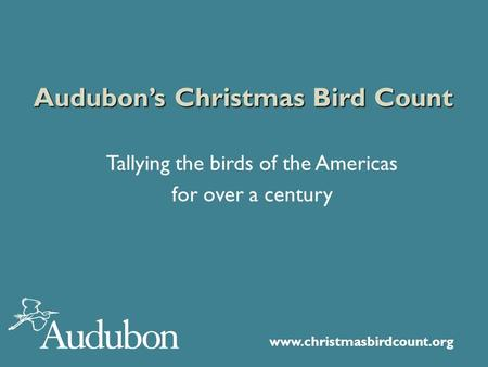 Www.christmasbirdcount.org Audubon's Christmas Bird Count Tallying the birds of the Americas for over a century.