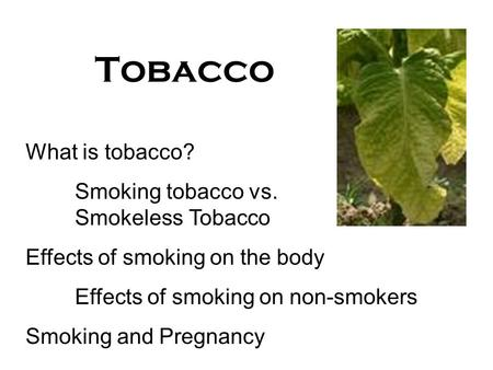 Tobacco What is tobacco? Smoking tobacco vs. Smokeless Tobacco Effects of smoking on the body Effects of smoking on non-smokers Smoking and Pregnancy.