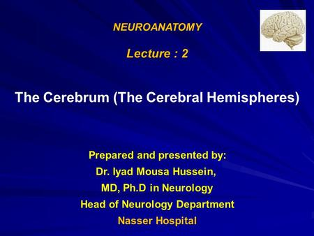 NEUROANATOMY Lecture : 2 The Cerebrum (The Cerebral Hemispheres) Prepared and presented by: Dr. Iyad Mousa Hussein, MD, Ph.D in Neurology Head of Neurology.