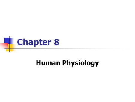 Chapter 8 Human Physiology. Copyright © The McGraw-Hill Companies, Inc. Permission required for reproduction or display. CNS Consists of: Brain Spinal.