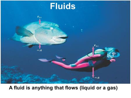 A fluid is anything that flows (liquid or a gas) Fluids.