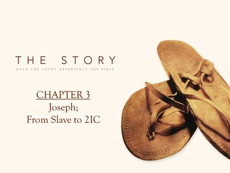 CHAPTER 3 Joseph; From Slave to 2IC. David's Story.
